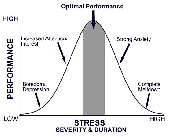 Performance and Stress